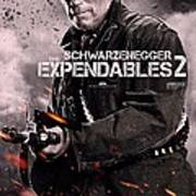 The Expendables 2 Schwarzenegger Art Print
