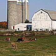 The Farm In Autumn Art Print