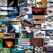 The Fishing Hole Collage Rectangle Art Print