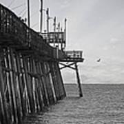The Fishing Pier Art Print