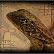 The Florida Lizard Art Print