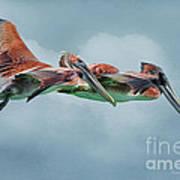 The Flying Pair Art Print