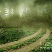 The Foggy Road Art Print
