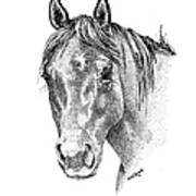 The Gentle Eye Horse Head Study Art Print by Renee Forth-Fukumoto
