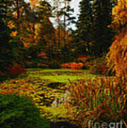The Golden Pond Art Print
