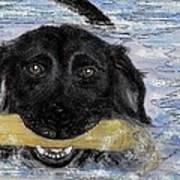 The Great Swim Art Print