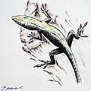 The Green Lizard Art Print