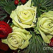 The Green Roses Of Winter Art Print