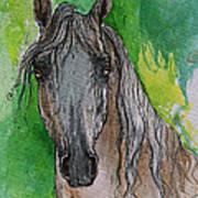 The Grey Arabian Horse 17 Art Print