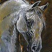 The Grey Arabian Horse Oil Painting Art Print
