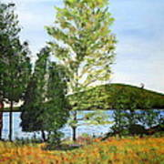 The Grey Camp Beech Hill Pond Art Print