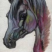 The Grey Horse Drawing 1 Art Print