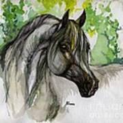 The Grey Horse Drawing Art Print