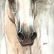 The Grey Horse Portrait 2014 02 10 Art Print