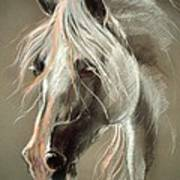 The Grey Horse Soft Pastel Art Print
