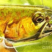 The Hare And The Trout Art Print