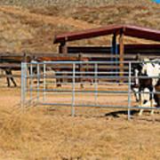 The Horse Ranch 3 Art Print