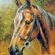 The Horse's Head Art Print