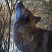 The Howl Art Print