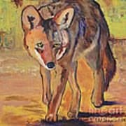 Coyote Hunting Art Print