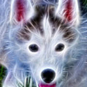 The Huskie Pup Art Print by Bill Cannon