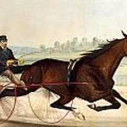 The King Of The Turf Print by Currier And Ives