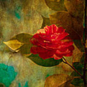 The Lady Of The Camellias Art Print by Loriental Photography