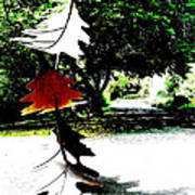 The Leaves Will Soon Start To Fall  Art Print