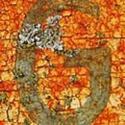 The Letter G With Lichens Art Print