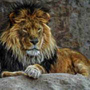 The Lion Digital Art Art Print
