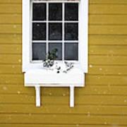 The Little Window Art Print