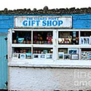 The Lizard Point Gift Shop  Art Print