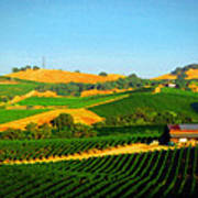 The Los Carneros District Art Print