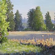 The Lower Field Art Print