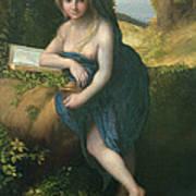 The Magdalene, C.1518-19 Oil On Canvas Art Print