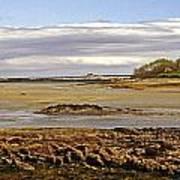The Maine Coast Art Print by Skip Willits