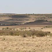 The Mara Plains Art Print