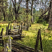 The Meadow Fence Art Print