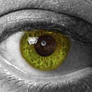 The Minds Eye Black And White Art Print