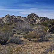 The Mojave Desert Art Print