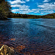 The Moose River In The Spring Art Print