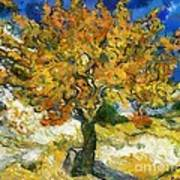 The Mulberry Tree After Van Gogh Art Print
