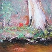 The Old Gum By The Creek Art Print