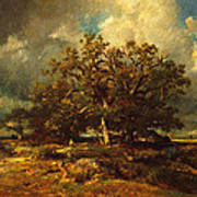 The Old Oak Art Print