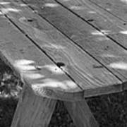 The Old Picnic Table Art Print