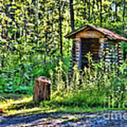 The Old Shed Art Print by Cathy  Beharriell