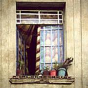 The Open Window Art Print
