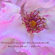 The Optimist Sees The Rose Art Print