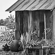 The Outhouse Bw Art Print