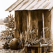 The Outhouse Art Print